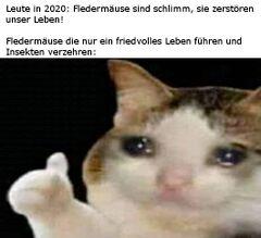 Weinende Katze, die den Daumen hochhebt - Meming Wiki